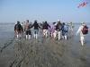 Urlaub Greetsiel 2011