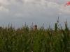 Otto - der Pilsumer Leuchtturm