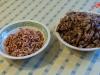 Greetsieler Granat - ganz frisch und gepult