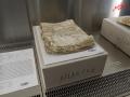 Ungereinigte Dokumente - Tag der Archive am 03.03.2012 /Foto: Stefan Schmidt