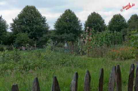 Blick übern Gartenzaun