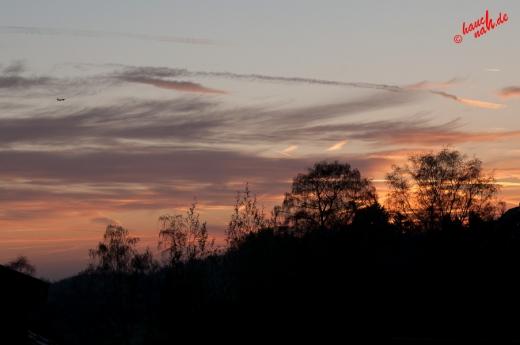 Flieg der Sonne entgegen in einen neuen Tag