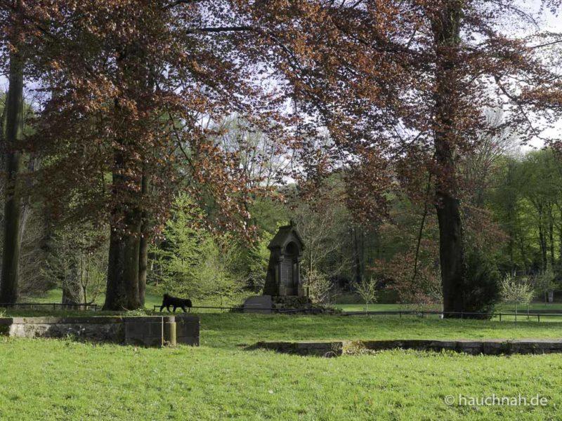 Parkanlage Klosterruine Heisterbach